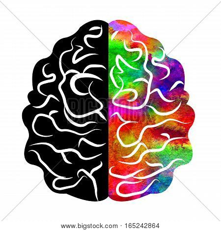 Watercolor Logo Modern Brain Sign of Psychology. Human. Creative style. Icon in . Design concept. Brand company. Rainbow violet left right color isolated on white background. Symbol for web, logotype.