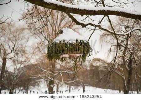 bird house in winter english garden, bavaria
