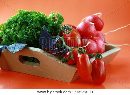 Different fresh vegetables