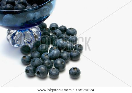 Blueberries arranged at base of blue glass dish, photographed on white