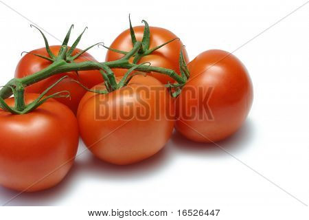 Vine ripened tomatoes, isolated on white