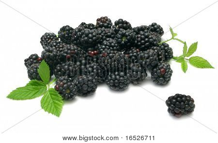 Fresh Blackberries with leaves, isolated on white