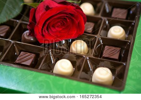Red rose and sweet chocolates pralines background