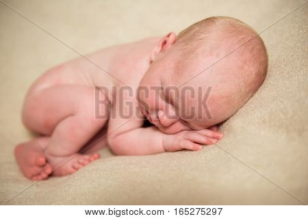 A newborn baby sleeps in the fetal position