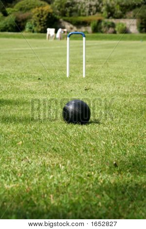 Croquet Black Ball