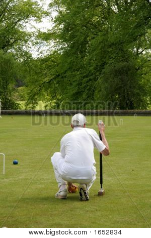 Croquet Player Studoies The Game