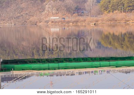 Landscape of reflections in a river of trees and the underside of a green bridge