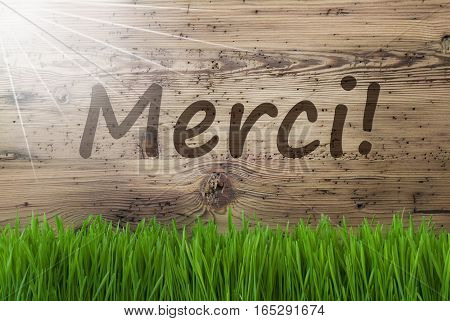 French Text Merci Means Thank You. Spring Season Greeting Card. Sunny Aged Wooden Background With Gras.