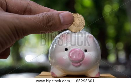 save money, save money concept, piggy save money