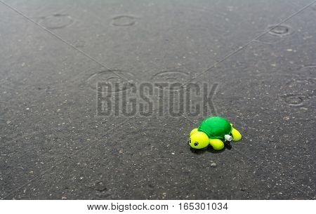 Abandoned child's toy in a big puddle