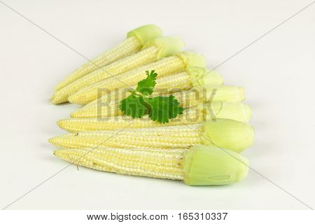 baby corn with dew drop prepare for cooking