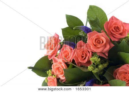 Buch de flores