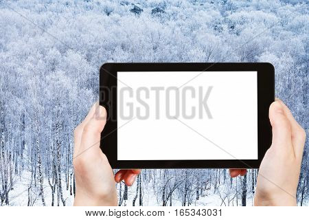 Tablet With Cut Out Screen And Frozen Forest