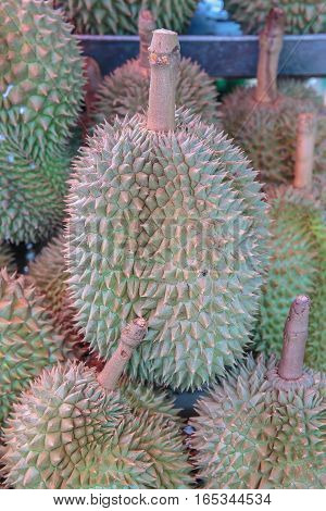 durian fruit for sell at the market. Thailand