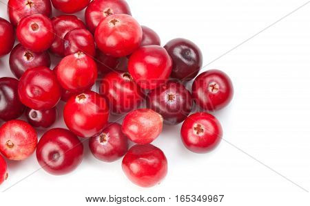 Cranberries on white background macro view. Red ripe detailed forest berries. up view studio photography. healthy vegetarian food