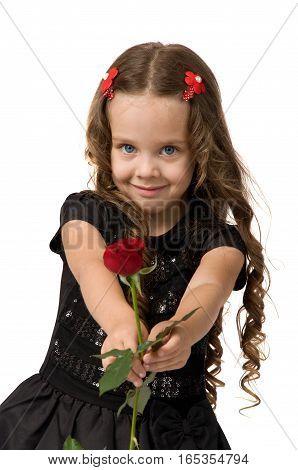 little girl holding a fresh red rose. romantic gift