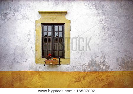 Old neglected house wall with flowery window