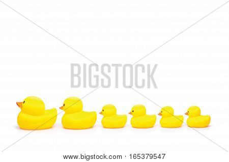 yellow rubber duck toy on white background