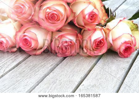 Rose in spring on a rustic wooden table for valentin and mothers day