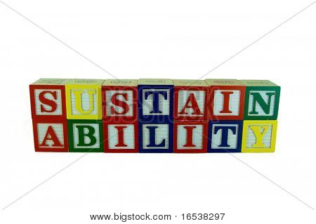 a set of alphabet blocks that spell sustainability in two rows