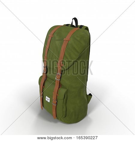 Green Backpack isolated in white background. 3D illustration
