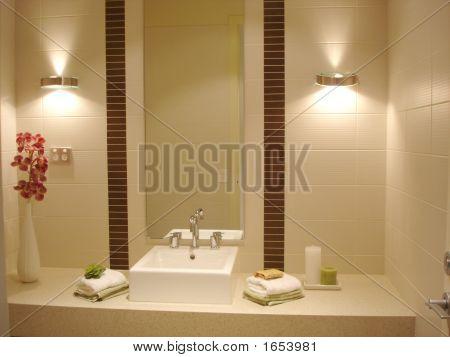 Fancy Bathroom.