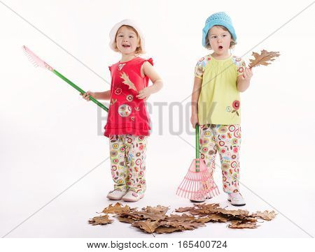 photo of two funny twins raking autumn leaves