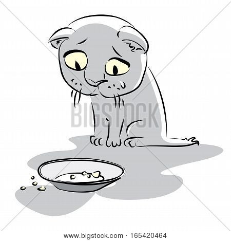 Hungry little kitty looks at the empty plate, on a white background. Vector illustration
