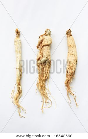 Ginseng, the energy root. Four whole ginseng roots, isolated on a white background.