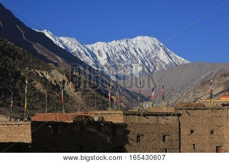 Scene in the Annapurna Conservation Area Nepal. Prayer flags on the roofs of old houses in Manang. Snow capped Tilicho Peak.