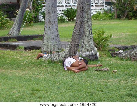 Homeless In Paradise 2 !!
