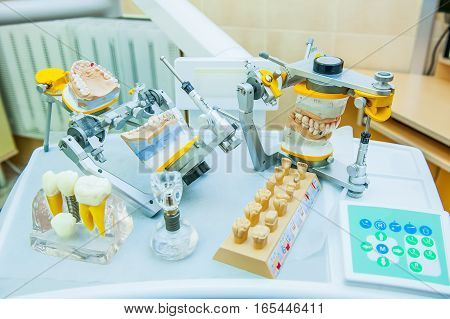 Teeth Molds With Basic Dental Tools On The Working Surface