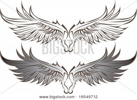 Vektor wings