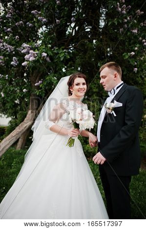 Wedding Couple Stay Near Lilac Tree At Their Happy Marriage Day.