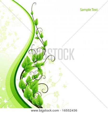 BEauty fresh green card