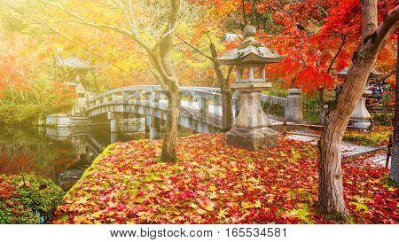 Autumn Foliage At Sunset In Eikando, Kyoto