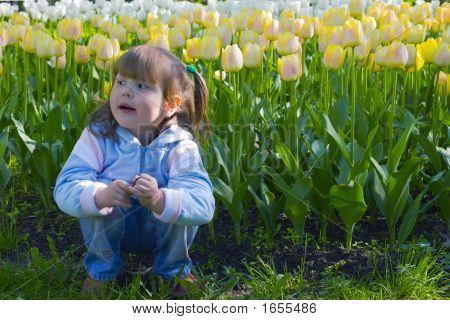 Thoughtful Girl In Tulips