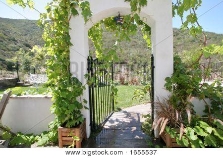 Vinyard Archway