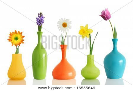 Frühlingsblumen in Vasen, isolated on white