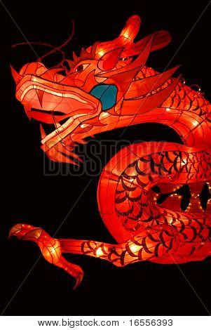 Chinese traditional dragon lantern