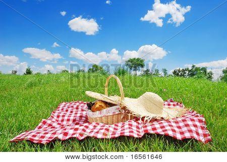 Picknick auf der Wiese am sonnigen Tag