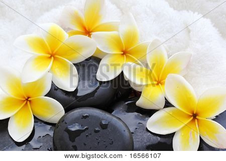 Spa still life with frangipani flowers,white towel and zen stone