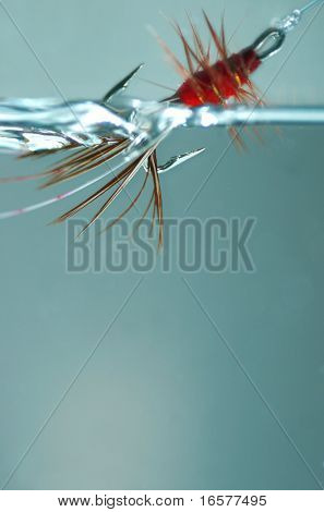 Red frances fly dragged through the water