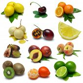 stock photo of tangelo  - Fruit Sampler  - JPG