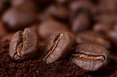 Closeup Of Coffee Beans At Roasted Coffee Heap. Coffee Bean On Macro Ground Coffee Background. Arabi poster