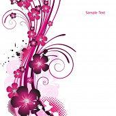 foto of beautiful flower  - Beauty pink flower design - JPG