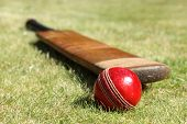 stock photo of cricket  - Cricket ball and bat on green grass of cricket pitch - JPG