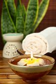 stock photo of sansevieria  - spa and body care treatment - JPG