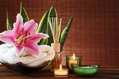 image of sansevieria  - Spa still life with essential oil - JPG