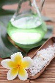 picture of sansevieria  - Spa still life with frangipani flower - JPG